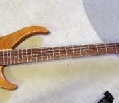 Peavey Bass 5
