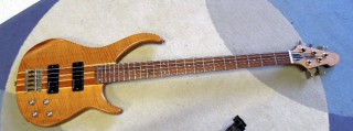 Peavy Bass 5 1